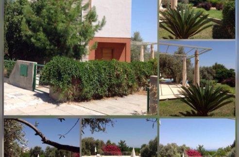 2 Bedroom Villa For Rent Location Bellapais Girne North Cyprus (KKTC)